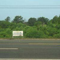 Cook Properties, Чунки