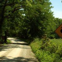 Winding gravel road, Бонн Терр