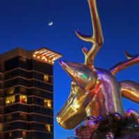 Reindeer Ponders the crescent moon above the Hilton in Branson, MO, Брансон