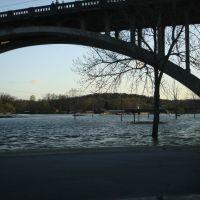 Flood of 2008 #6, Брансон