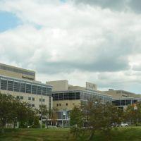Mercy Hospital, Дес Перес