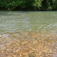 Current River -- nearing Round Spring, Диксон