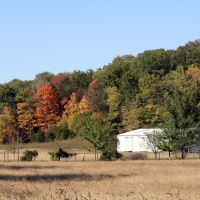 Autumn touches the hillside, Диксон