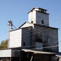 Hermann seed storage (Missouri Farmers Association), Диксон