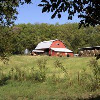 Barn with cows and hay, Кап Гирардиу