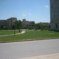 University of Missouri, Колумбия