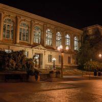 Ellis Library - University of Missouri, Колумбия