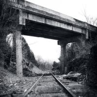 The Littered Rails, Лидвуд