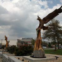 Carved wooden eagles, Camden County Courthouse, Camdenton, MO, Нортви