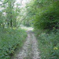Line Creek Trail, Нортмур