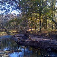 Turkey Creek, Окленд-Парк
