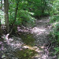 Crowder State Park - May, Олбани (Генри Кантри)