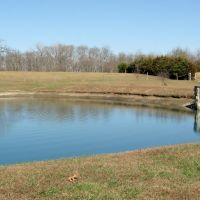 Dixie Dachsunds Pond, Олбани (Генри Кантри)