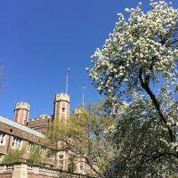 Brookings in Spring 布魯金斯樓春景, Ричмонд Хейгтс