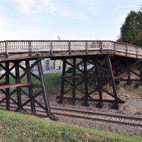 pedestrian bridge, Lanning Wooden Bridge Park, Rolla, MO, Ролла