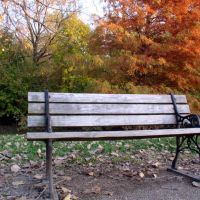 Bench in Frontier Park, Saint Charles, MO, Сант-Чарльз