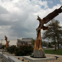 Carved wooden eagles, Camden County Courthouse, Camdenton, MO, Флат Ривер