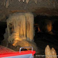 Fantastic Cavern, Харвуд