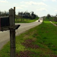Mailbox, Харвуд