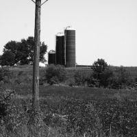 Telegraph pole/Silos, Хунтлейг