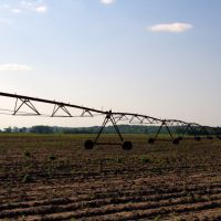 Irrigation, Шревсбури