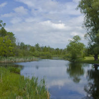 Cedar River, Бартон-Хиллс