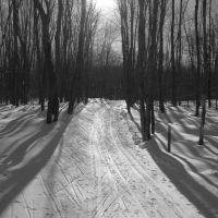 Wolverine Ski Trail, Бессемер