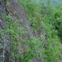 Powdermill Creek Bluff, Бессемер