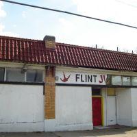 Flint Dojo, Бичер