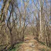 Hilldale Rd trail, Варрен