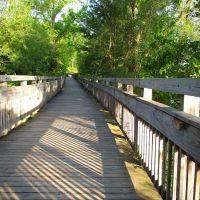 Boardwalk in Argo Nature Area, Варрен