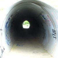 Trail tunnel under Tuebingen Pkwy, Варрен