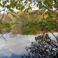 Argo Pond, Варрен