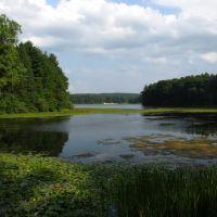 Phipps Lake, Гудрич