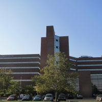 Allegiance Hospital, Джексон
