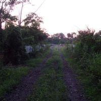 approaching abandoned RR trestle, Дирборн