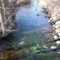 Clam River, Кадиллак