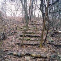 old cobblestone steps up to the sanatorium, Каламазу