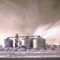 Ethanol Plant, Каро