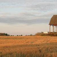 Farm Field, Клинтон