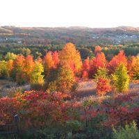 Fall in Leelanau, Лейк-Анжелус