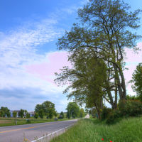 French Road, Лейк-Анжелус