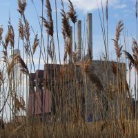 J R Whiting power plant close to the Nature Conservatory, Луна-Пир