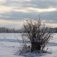 Winter Drive-by, Маунт-Моррис