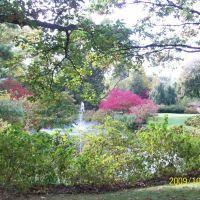 Dow Garden - Fall, Мидланд
