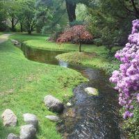 Dow Gardens Stream, Мидланд