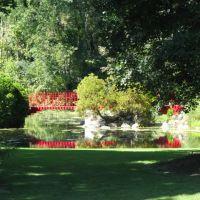 Dow Gardens, Мидланд