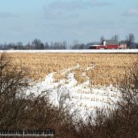 Distant red farm, Норт Мускегон