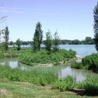 Newly created wetland, Elizabeth Park, Trenton, Mi, Саутгейт