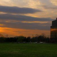 Sunset, Саутфилд